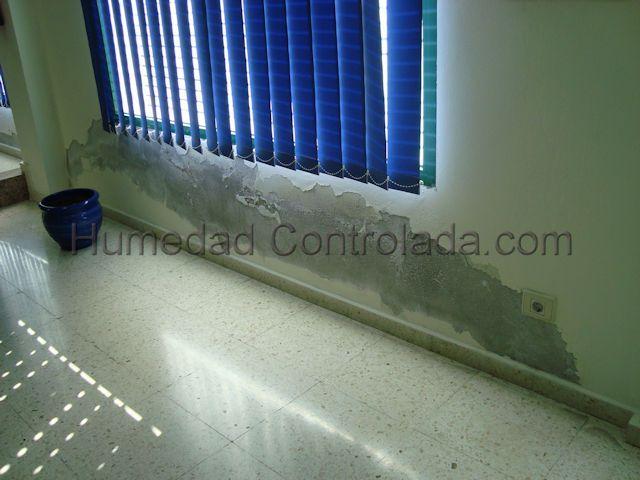 solución más adecuada para tus paredes con humedad