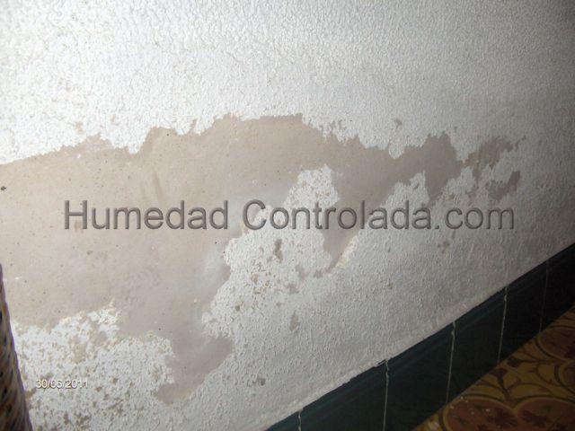 Problemas de humedad y ahora que soluciones garantizadas - Soluciones para mosquitas de la humedad ...