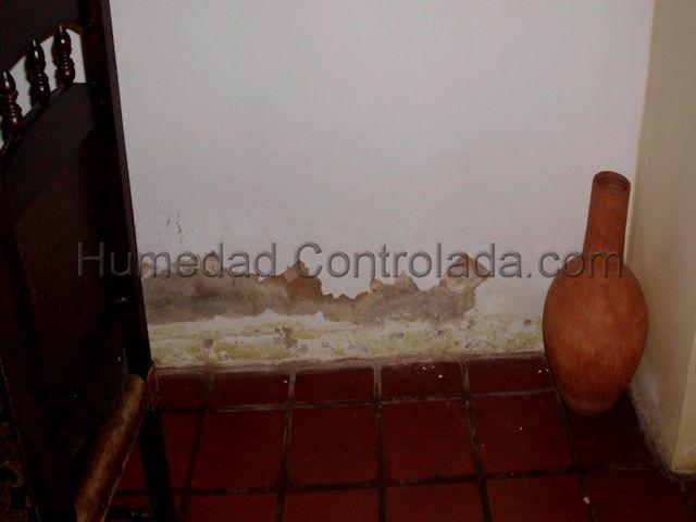 imágenes de humedad de capilaridad