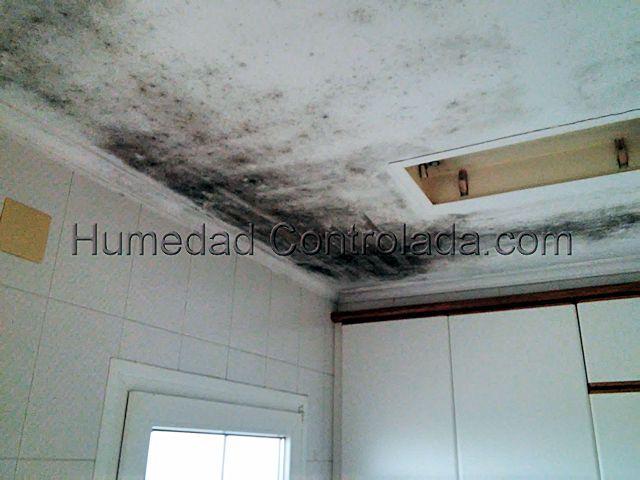 Fotograf as de humedad de condensaci n comparativo de - Humedad por condensacion en paredes ...