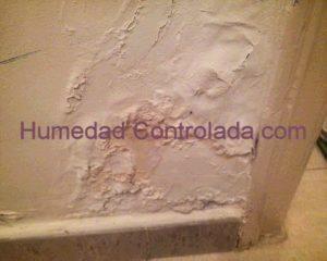 humedad en las paredes