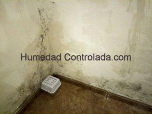 pasos necesarios para eliminar la humedad